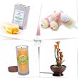 Product Variety Highlight