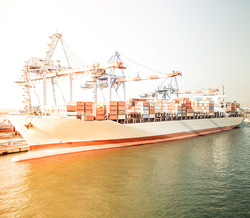 International transport companies now benefit from Wise Business Research.