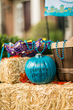 The Power of the Teal Pumpkin Project®:  Awareness Campaign by Food Allergy Research & Education Spreads Across the U.S.