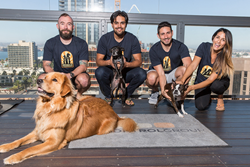 The Control Group Team and Dogs