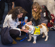 Pet Night on Capitol Hill Delivers the Message: Pets are Important to Our Health and Wellbeing