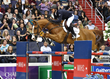 Olympic Athletes, Racing Ponies, and Charity Events Highlight the 2017 Washington International Horse Show