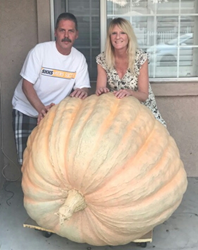 This 672-pound Atlantic Giant Featured at Town of Carefree Enchanted Pumpkin Garden Oct. 20-29, 2017