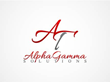 Alpha Gamma Solutions: 'Why we're Seeking Former Sports Superstars'