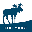Blue Moose Release Their Five Commandments on Becoming a Better Leader