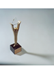 Marketing CoPilot Wins Three Stevie Awards in the 2017 International Business Awards