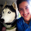 Dog Training Company Shifts Focus to Help Families and Their Dogs