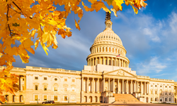 Simplifying the Work of Government Contractors