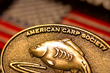 American Carp Society Unveils New Website to Help Anglers Outsmart and Catch the Wily, Hard-Fighting Sport Fish