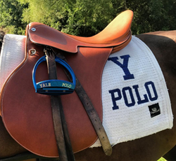 American Equus Yale Polo Irons