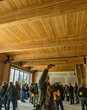 Mass Timber—the Construction Industry's New Disruptor—to Draw Hundreds of Global Experts to 3rd Annual International Mass Timber Conference