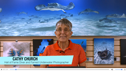 Cathy Church tutorial video on Vivid-Pix LAND & SEA SCUBA software