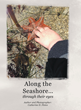 "Author Catherine D. Fletes's new book ""Along the Seashore"" is a book to delight children with magnificent discoveries at the water's edge and within tide pools."