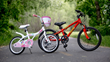 RYDA Bikes, Durable Bicycles Designed Especially for Kids that Don't Break the Bank for Parents, Roll onto Kickstarter