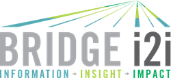 BRIDGEi2i Customer Analytics