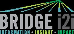 BRIDGEi2i Customer Analytics