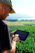 Yara acquires leading crop nutrition recommendation platform to strengthen Digital Farming offering