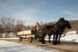 A sleigh during Winter Carnival at Eagle Ridge Resort and Spa