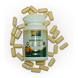 Mother Earth's Complete Multivitamin