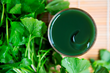 24 ways to fight skin ageing with centella asiatica: LipoTherapeia publishes research overview