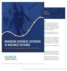 White paper on managing business licensing for maximum returns.