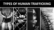 New Human Trafficking Alliance, Safe Heaven Inc, Endeavoring For Change, by Including Every World Citizen as Co-Founders of The Startup Company