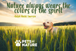 Pets by Nature Quote