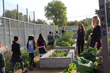 Children in school garden with PUSD staff