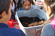 Students looking at tub of dirt and worms