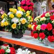<CFM Dia de La Virgen de Guadalupe Flowers>