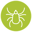 Tick species and risk information.