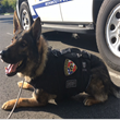 Noto Insurance Advisors Leads Lawrenceville Area Charity Drive to Equip Police Dogs with Bullet Proof Vests