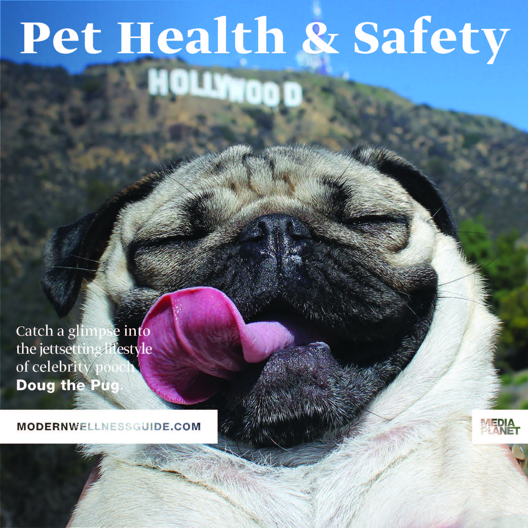Mediaplanet along with doug the pug the humane society and more mediaplanet along with doug the pug the humane society and more launches pet health safety campaign within usa today and online m4hsunfo