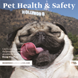 "Mediaplanet, Along with ""Doug the Pug"", The Humane Society and More, Launches Pet Health & Safety Campaign Within USA TODAY and Online"