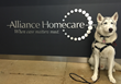 Alliance Homecare Partners with Beau the Rescue to Launch Pet Therapy Sessions for Seniors and Home Health Aides