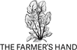 the farmer's hand corktown detroit holiday small business female-owned cafe market grocery