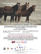 Alliance to Save America's Wild Horses & Burros Announces Prominent Ad-Buy to Fight Against Horse Slaughter