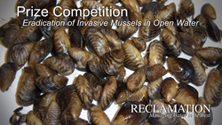 Eradication of Mussels Prize Competition