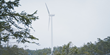 RE100 Member Top-finances New Wind Farm in Sweden