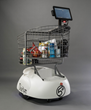 Dash Robotic Shopping Cart
