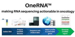 OneRNA