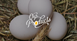 Braswell Family Farms is the second largest Eggland's Best franchisee in the United States and a leading producer of value-added private label egg products for quality minded retailers.