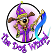 The Dog Wizard Franchise Hosting National Unruly Christmas Puppy Contest