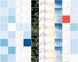 Genedata Screener