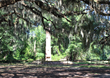 Willbrook Plantation Celebrates 220 Years