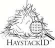 HAYSTACKID LLC Launches Fresh New Website