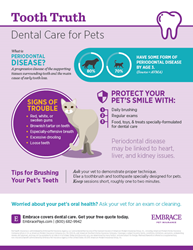 Infographic about dental care for pets