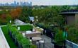 Best Artificial Turf Design in Austin Texas