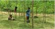David Mercier, Falcata trees, philanthropist