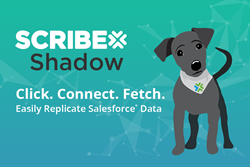 Scribe Shadow Logo - Easily Replicate Salesforce Data to SQL and MySQL Databases